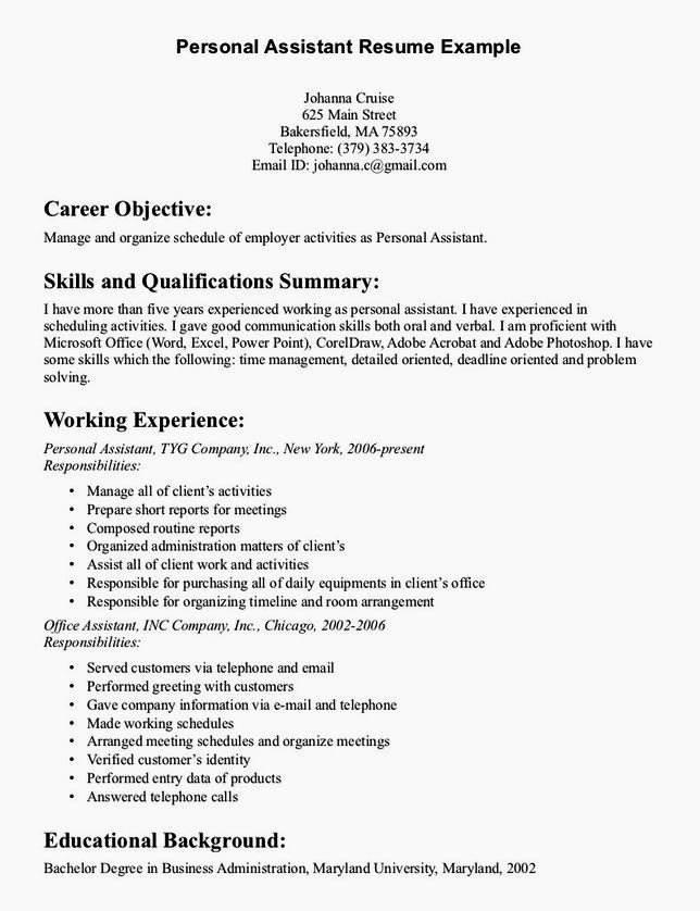 Additional Skills Resume Puter Skills