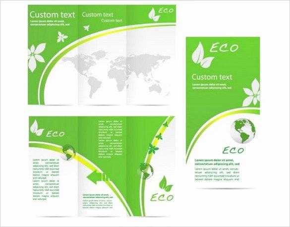 Adobe Illustrator Brochure Templates Free 25 Free