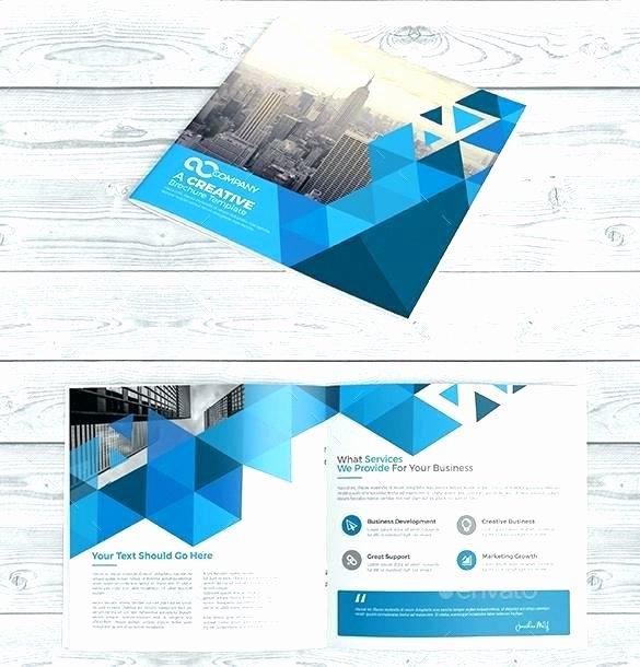 adobe illustrator brochure templates free template vector booklet illustration