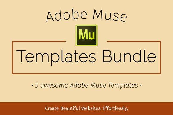 Adobe Muse Templates Bundle Scriptmafia org