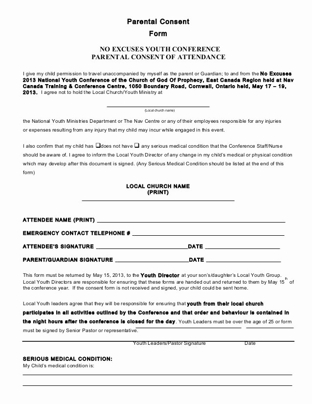 Affidavit Parental Consent form Template Choice Image