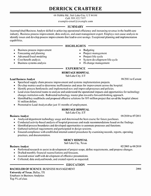 Amazing Business Resume Examples to Get You Hired