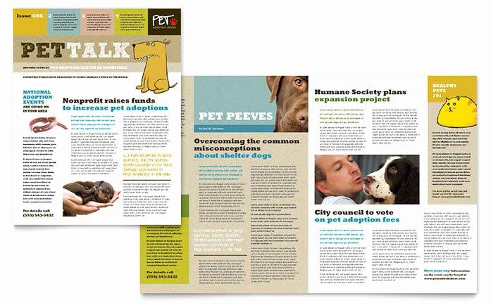Animal Shelter & Pet Adoption Newsletter Template Design
