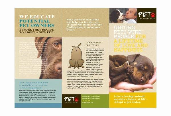 Animal Shelter & Pet Adoption Print Template Pack