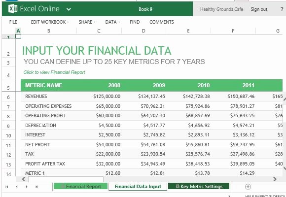 Annual Financial Report Template for Excel Line