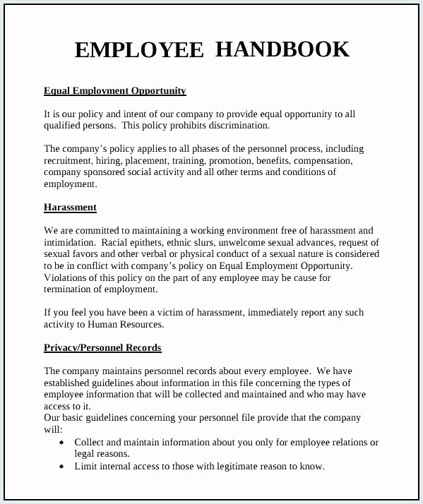 Appendix Pany Policy Manual Template Sample and