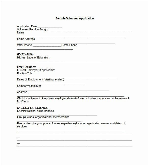 Application Template Word F Resume