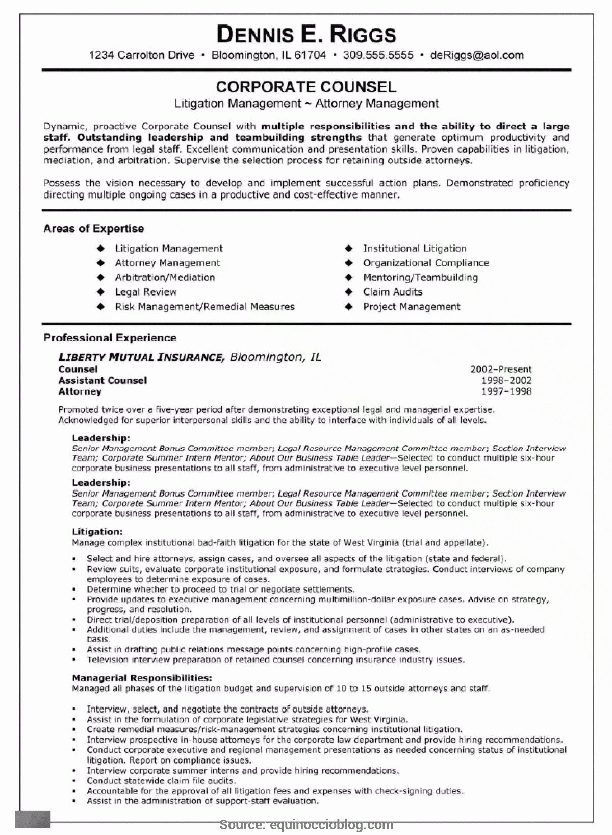Areas Expertise Resume Examples