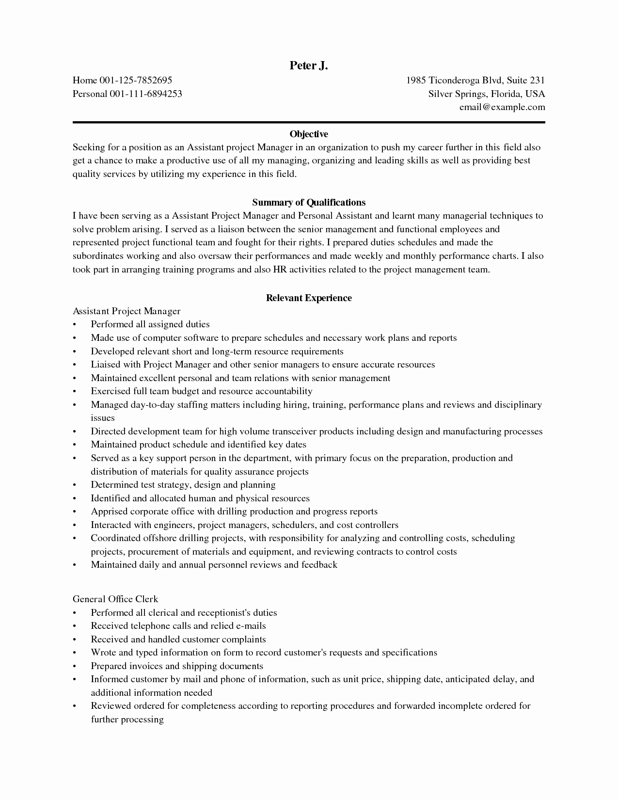 Assistant Project Manager Resume