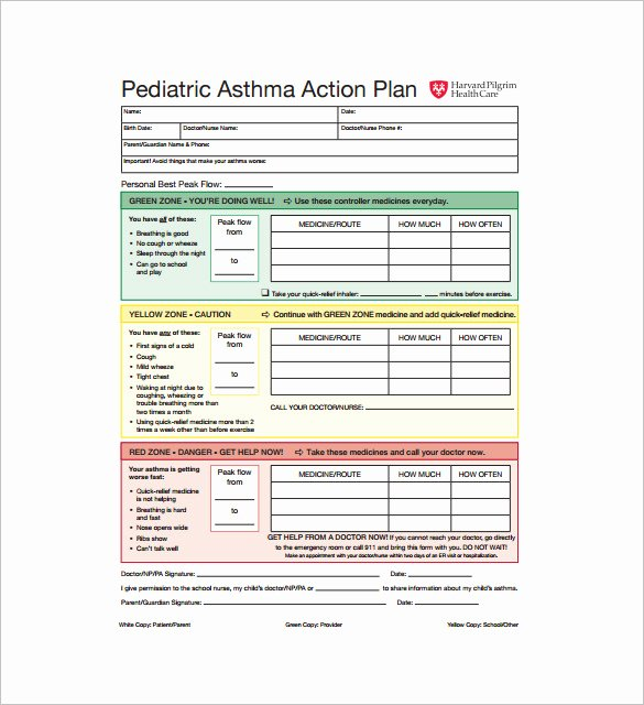 Asthma Action Plan Template – 13 Free Sample Example