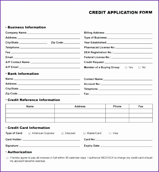 Auto Loan Credit Application Template – Appinstructor