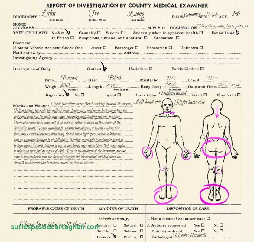 Autopsy Report Template Blankat Example Uk Guidelines