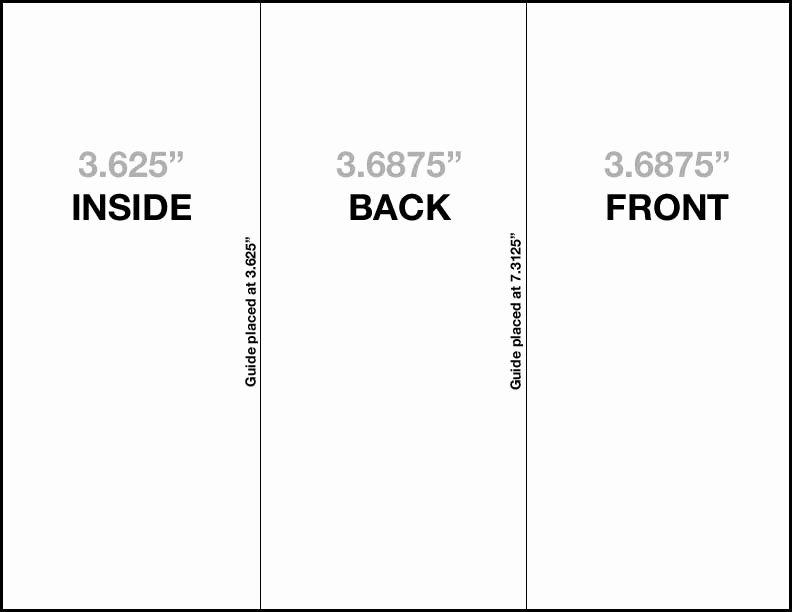 Avery Tri Fold Brochure Template Csoforumfo
