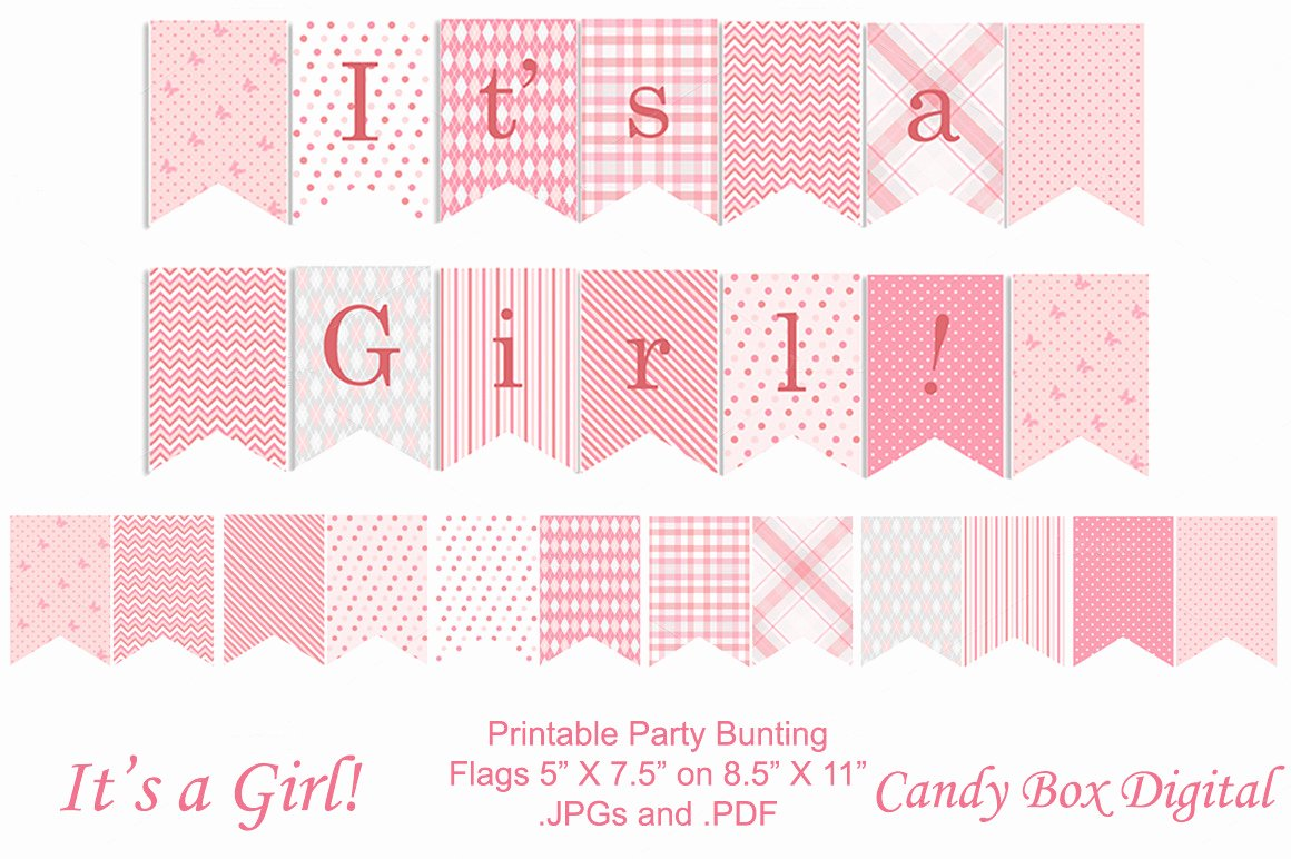 Baby Girl Full Size Party Banner Objects On Creative Market