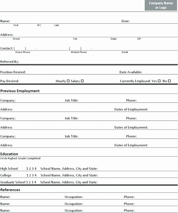 Basic Job Application It form Sample Doc Template