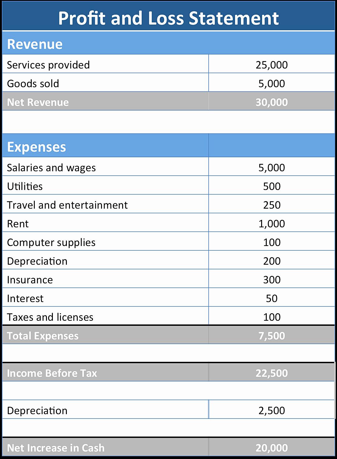 Basic Profit and Loss Statement Template Mughals