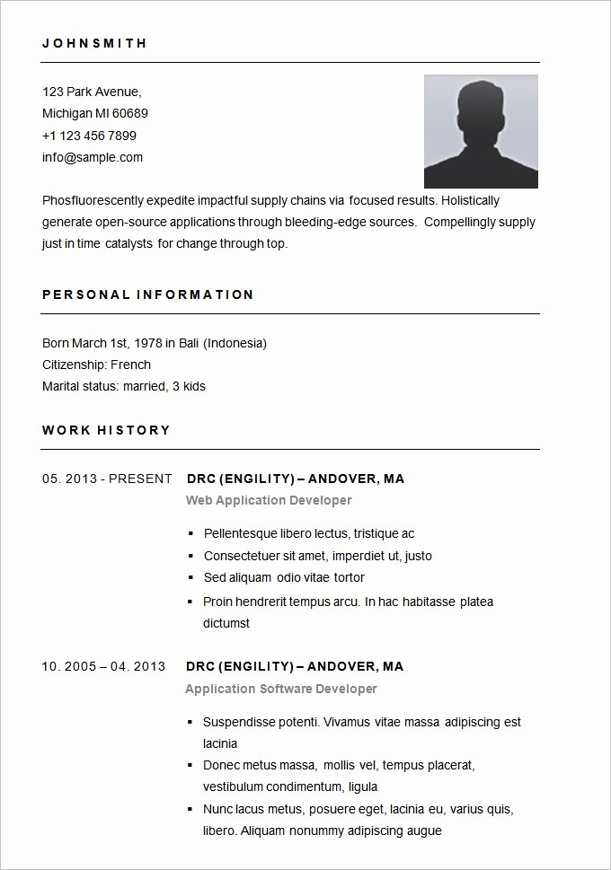 Basic Resume Sample format Best Resume Gallery