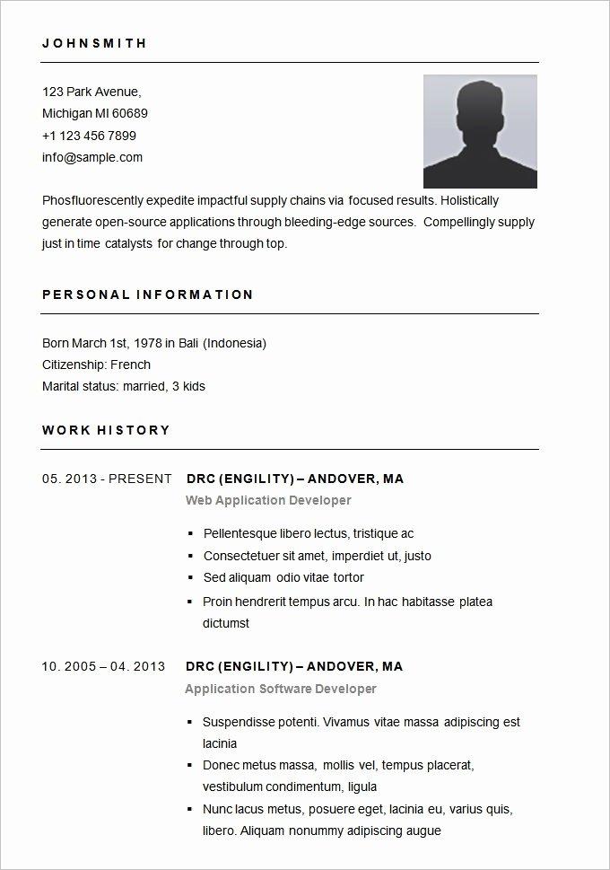 Basic Resume Sample format Best Resume Gallery