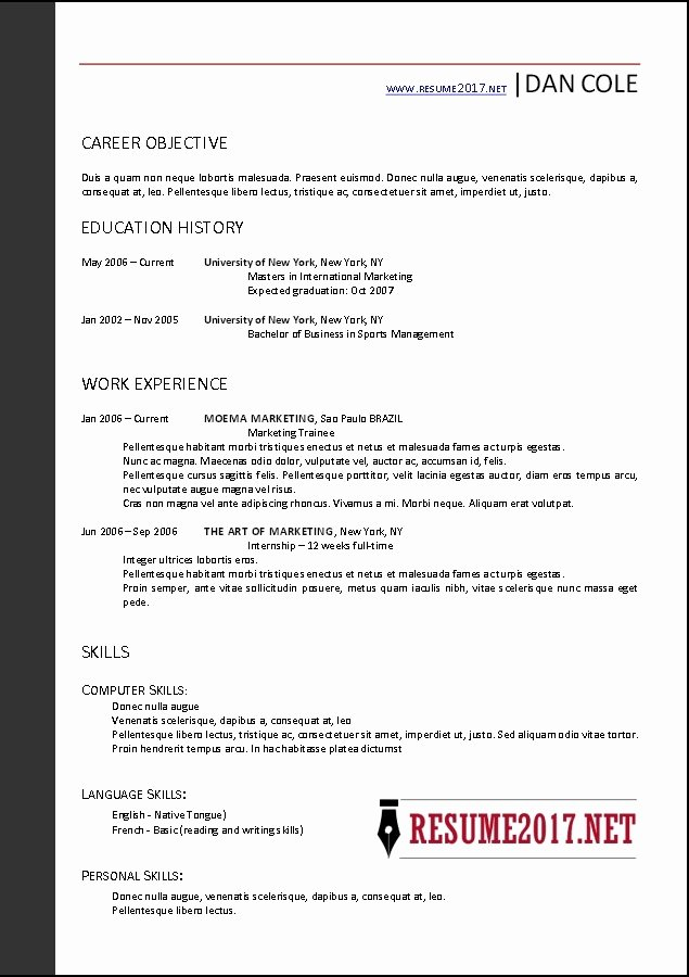 Basic Resume Template 2017
