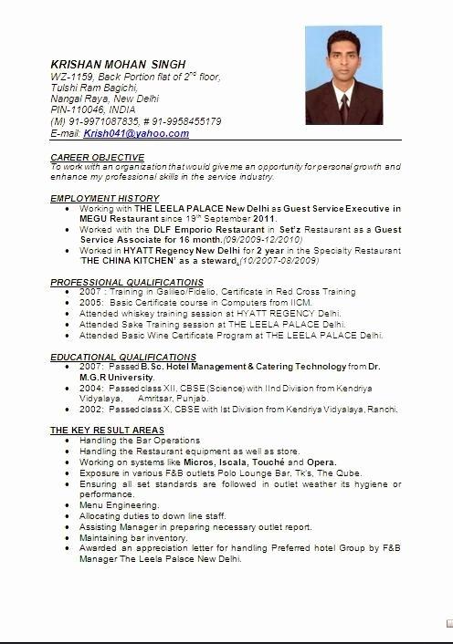 Beautiful Resume format