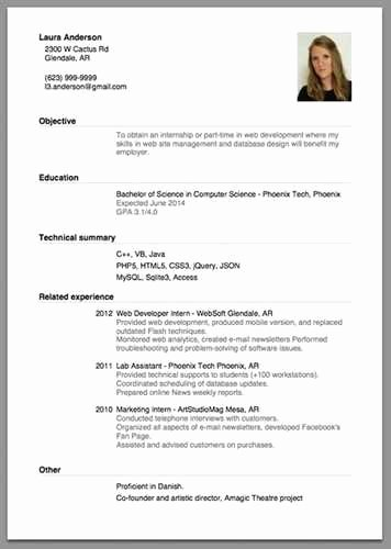 Beginner Acting Resume Sample source