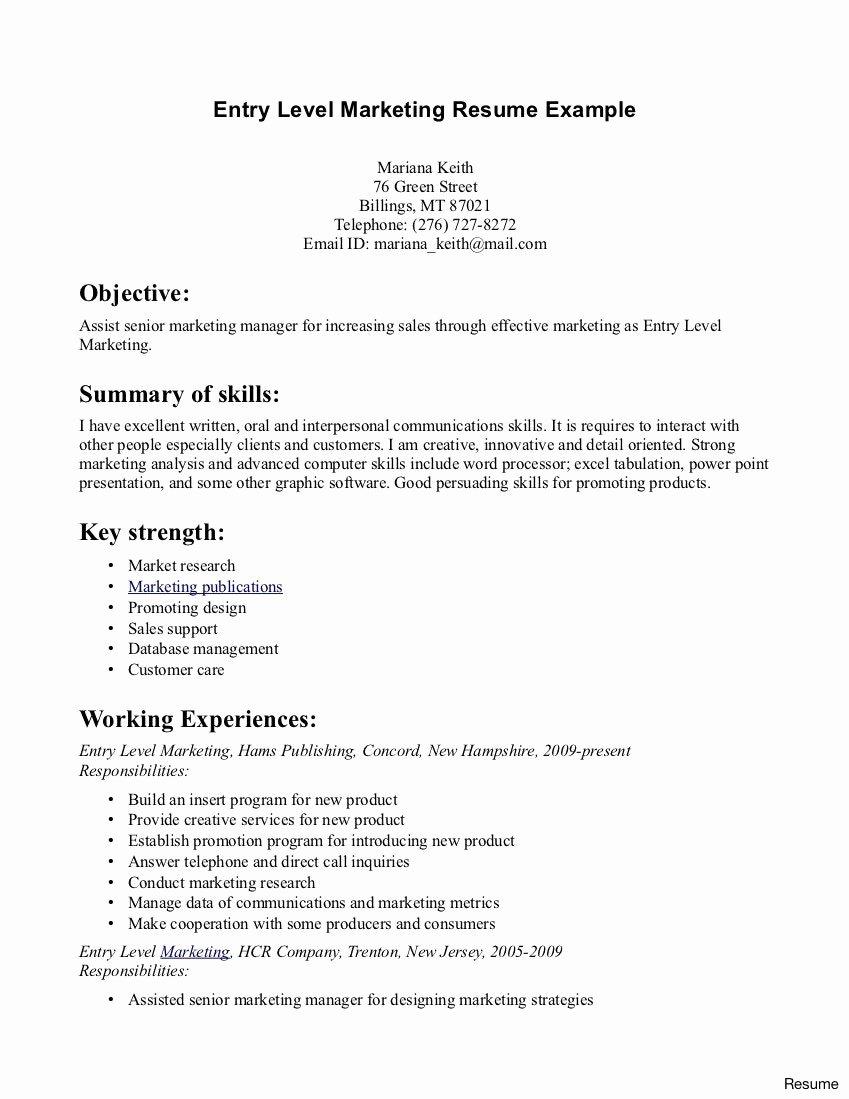 Beginner Resume Examples Puter Programmer Entry Level