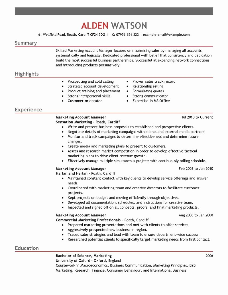 Best Account Manager Resume Example