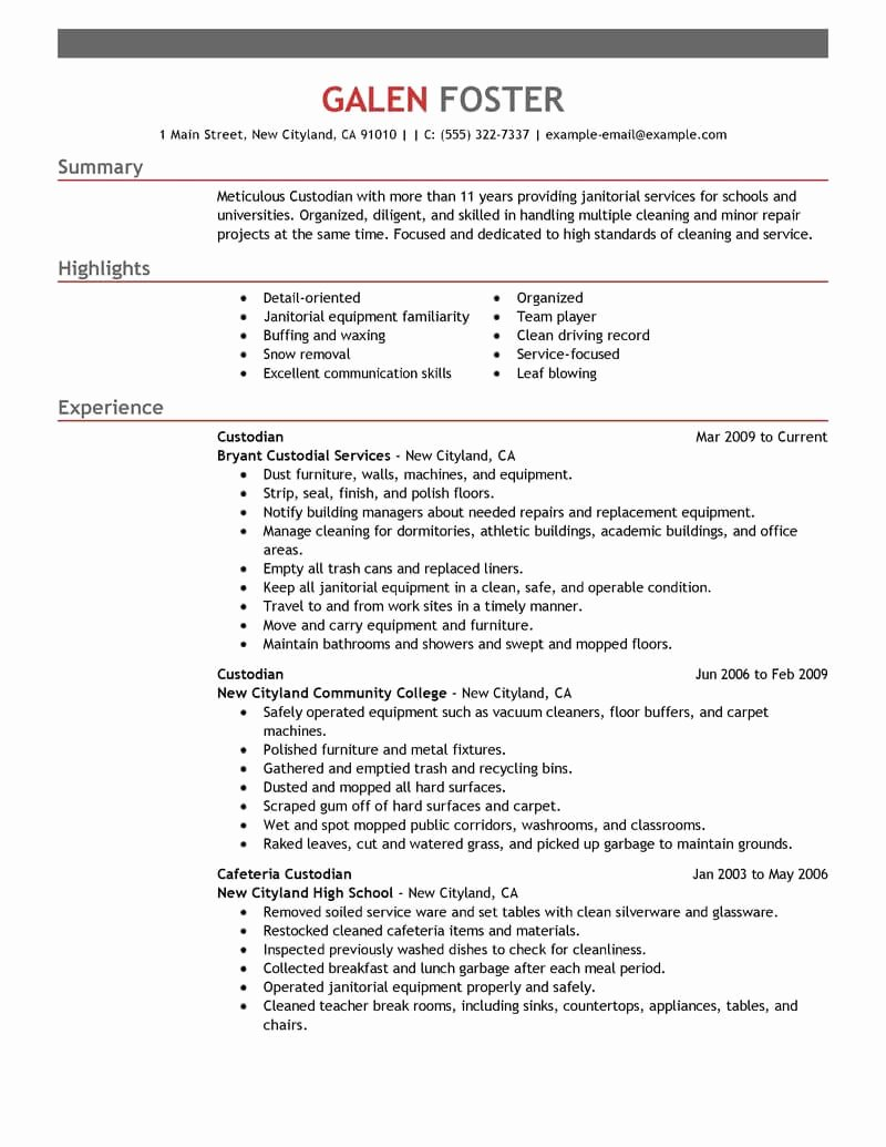 Best Cleaning Professionals Resume Example