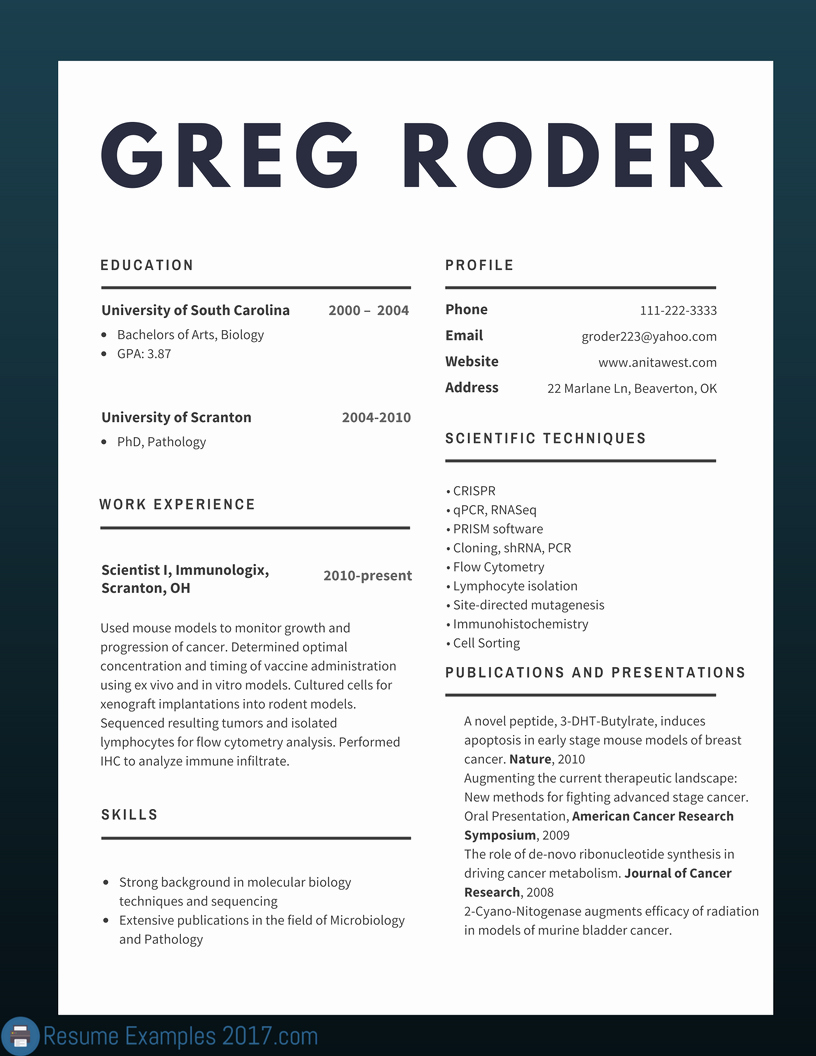 Best Cv Examples 2018 to Try