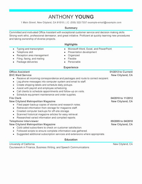 Best Fice assistant Resume Example