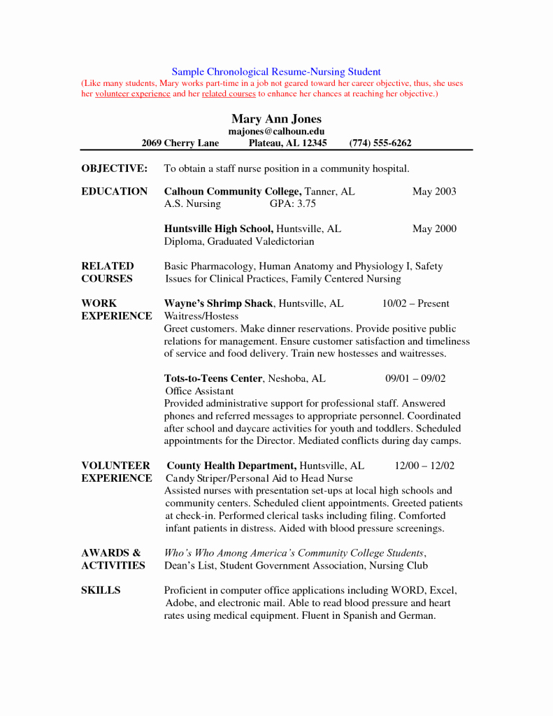Best Free Nurse Resume Template