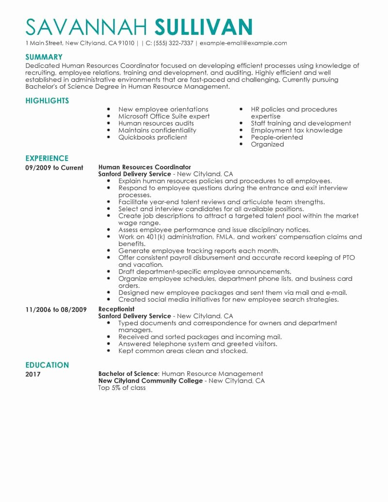 Best Hr Coordinator Resume Example