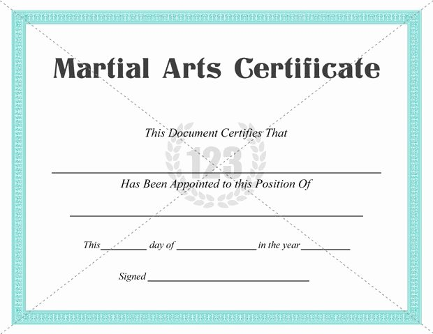 Best Martial Arts Certificate Templates for Free Download