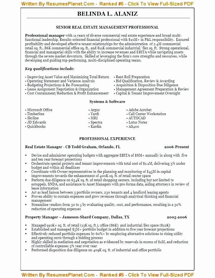 Best Professional Resume Writers Ideas Ten Opinion
