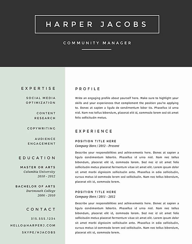 Best Resume format 2017 Template