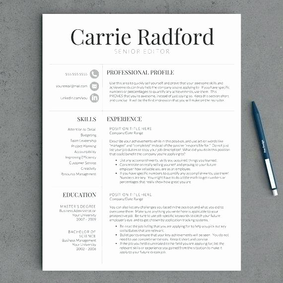 Best Resume Template Best Resumes Templates Best