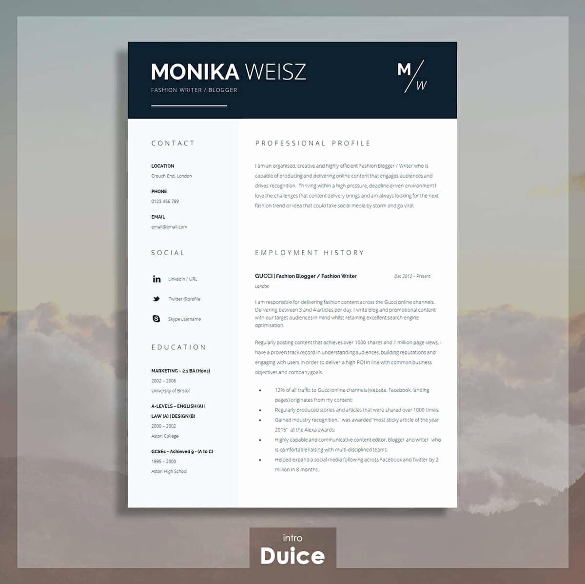 Best Resume Templates 15 Examples to Download & Use Right