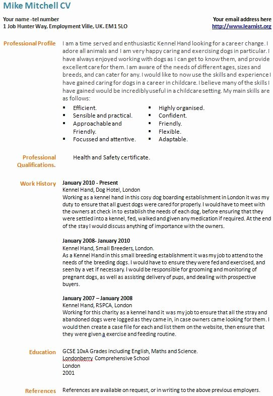 Best S Of Good Curriculum Vitae Examples Very Good