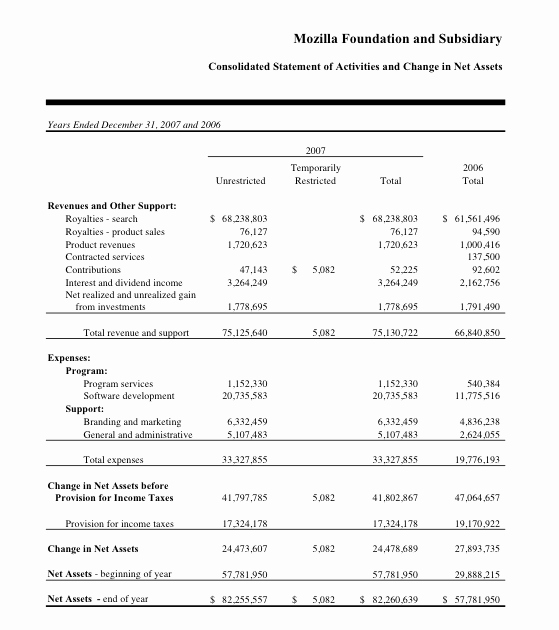 Best S Of Non Profit Financial Statement Template