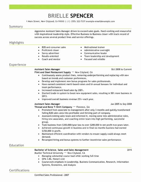 Best Sales assistant Managers Resume Example
