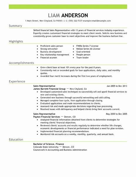 Best Sales Representative Resume Example