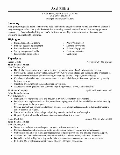Best Sales Team Member Resume Example