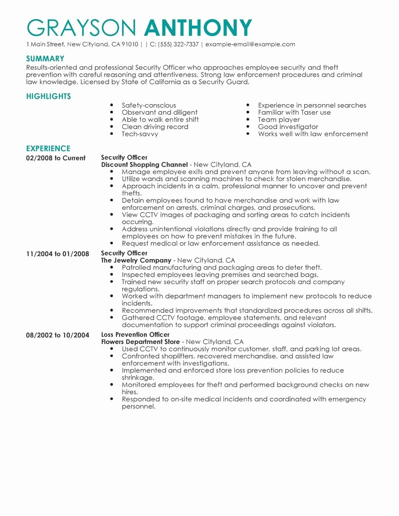 Best Security Ficers Resume Example