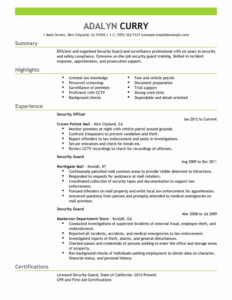 Best Security Guard Resume Example