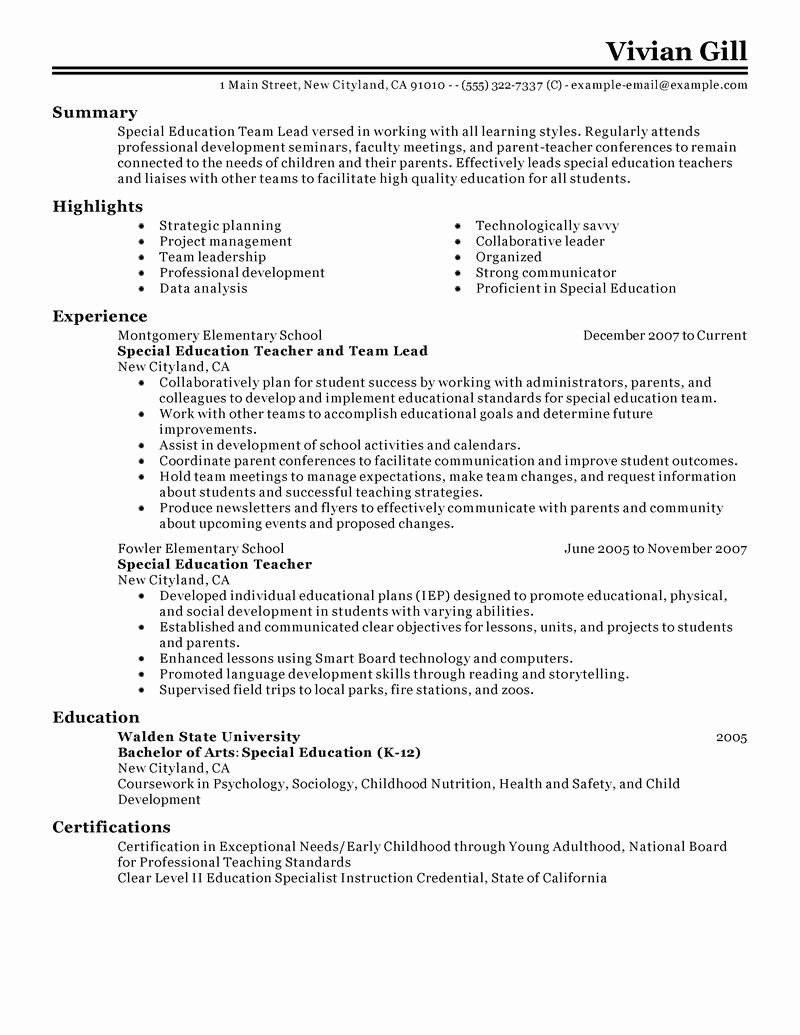 Best Team Lead Resume Example