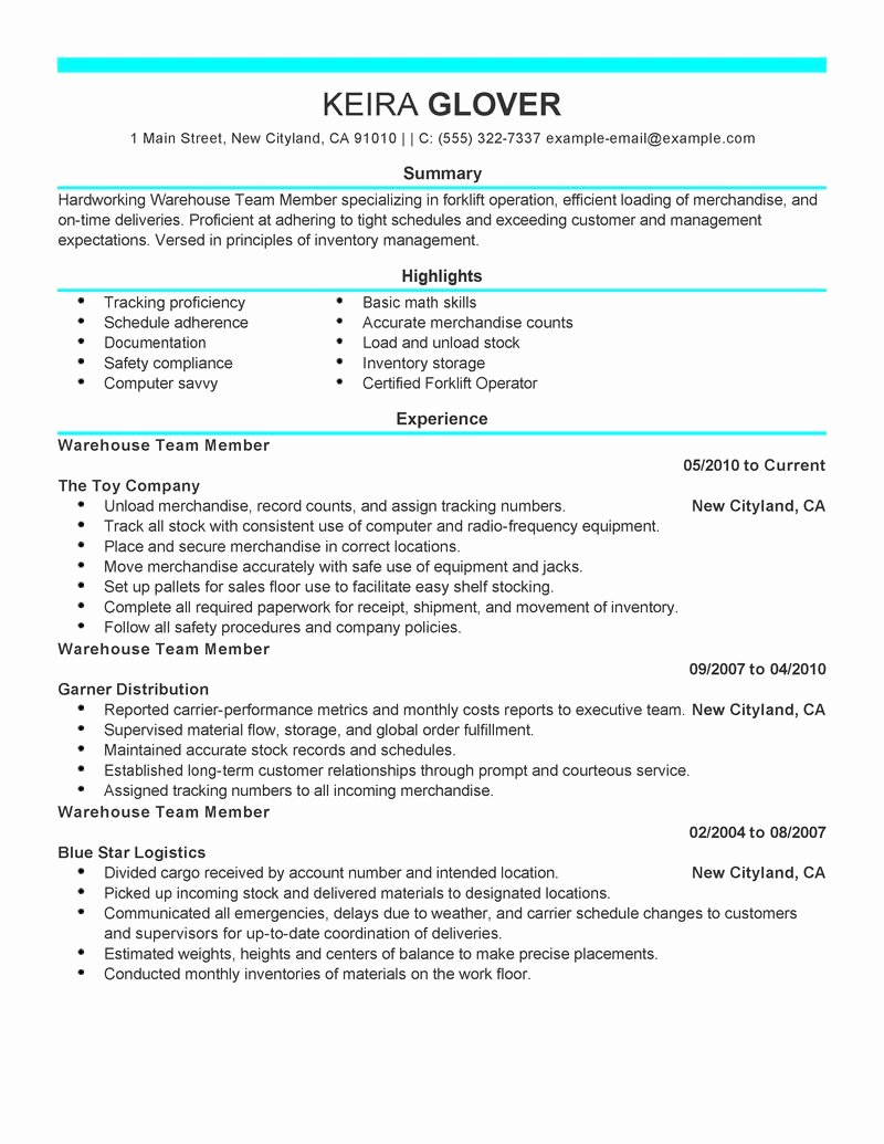 Best Team Members Resume Example