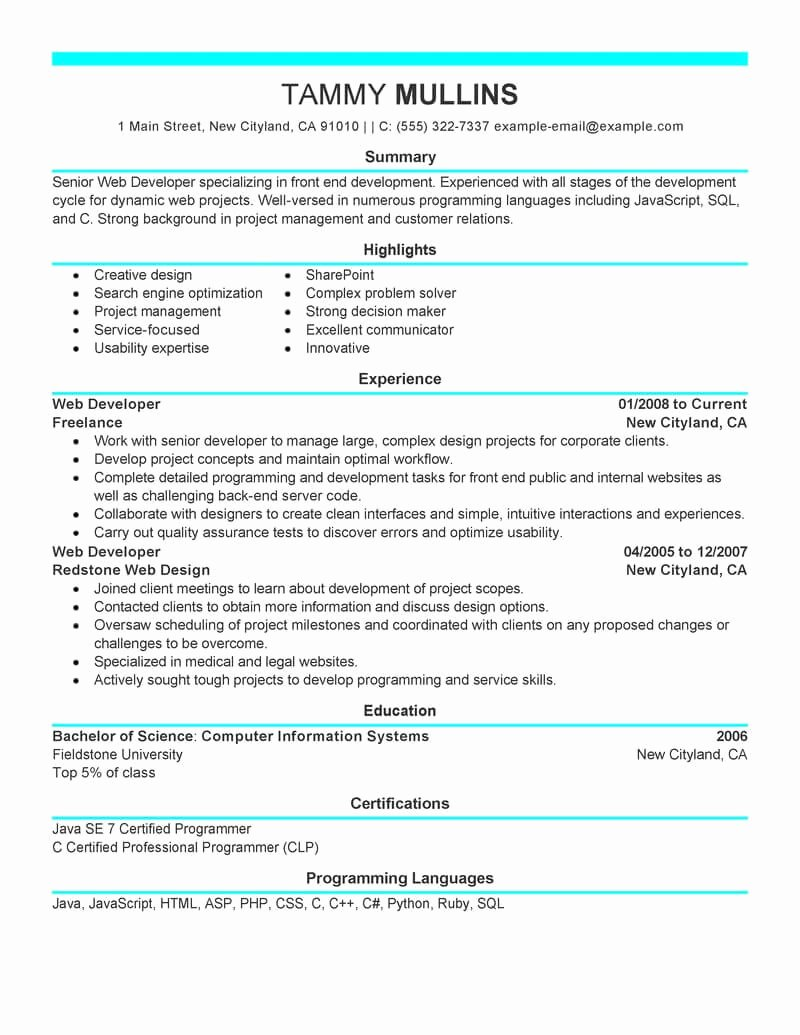 Best Web Developer Resume Example