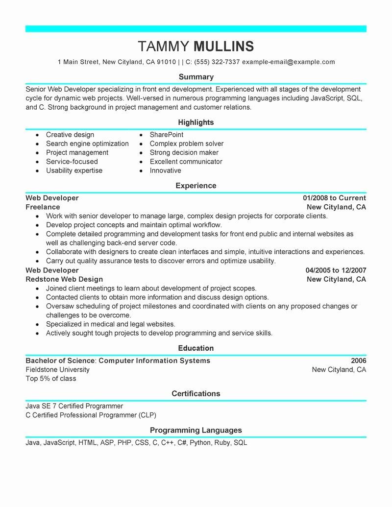 Best Web Developer Resume Example Entry Level