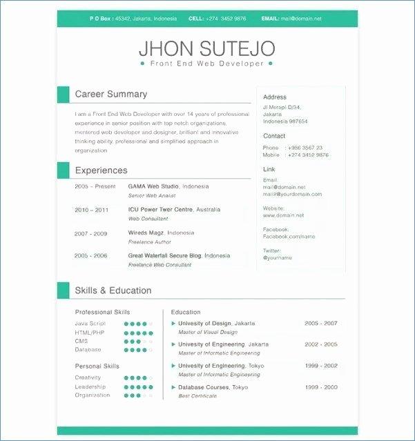 Bi Developer Resume Elegant Resume Preparation Service