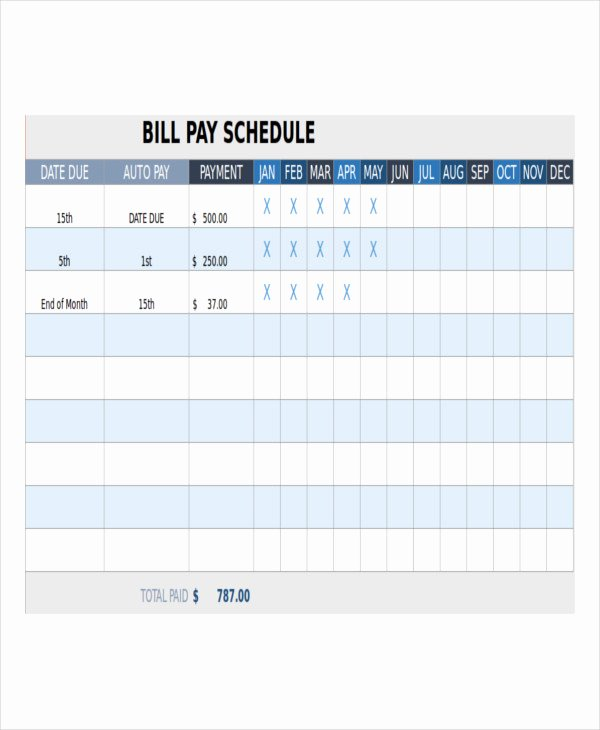 Bill Payment Schedule Template 12 Free Word Pdf format